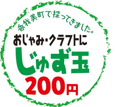 2011-0602juzudama.jpg
